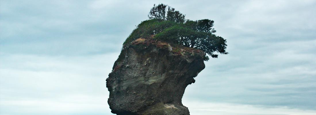 "Motukiekie the ""Shrub Islands"""